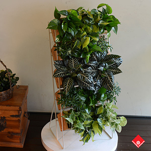 Make your home a green haven with a standing vertical garden.