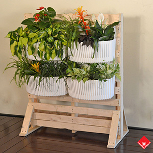 Put multiple planters together to make up you own living wall in your Montreal home today.