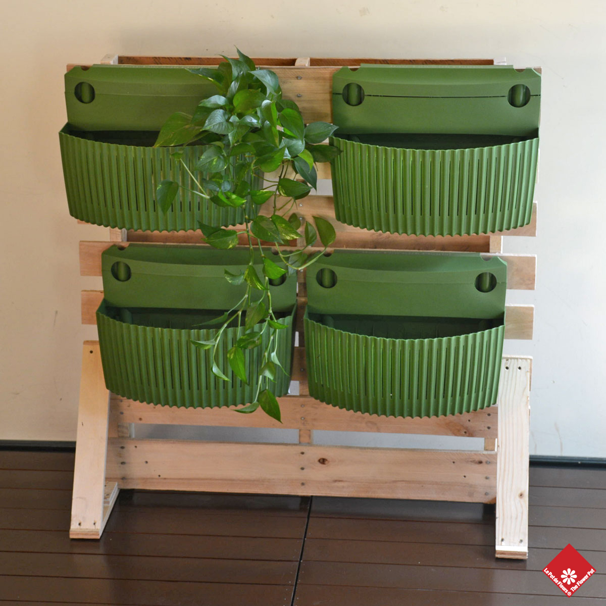 Woolly Pocket has different colour wall planters for your unique living wall design in Montreal.