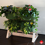 Make a standing living wall with a pallet and Woolly Pocket wall planters filled with plants.