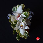 A beautiful two-orchid corsage arrangement for your Montreal wedding.