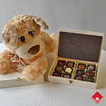 Chocolate truffles in wooden gift box with puppy.