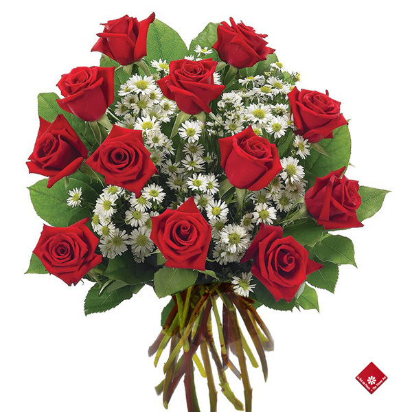 Rose bouquet of 12 romantic roses.