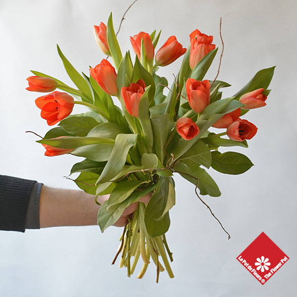 Bunch of freshly cut tulips for a Montreal delivery from The Flower Pot.