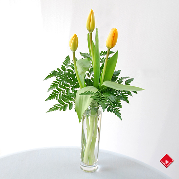 Woman's Day gift of a three tulips in a vase The Flower Pot.