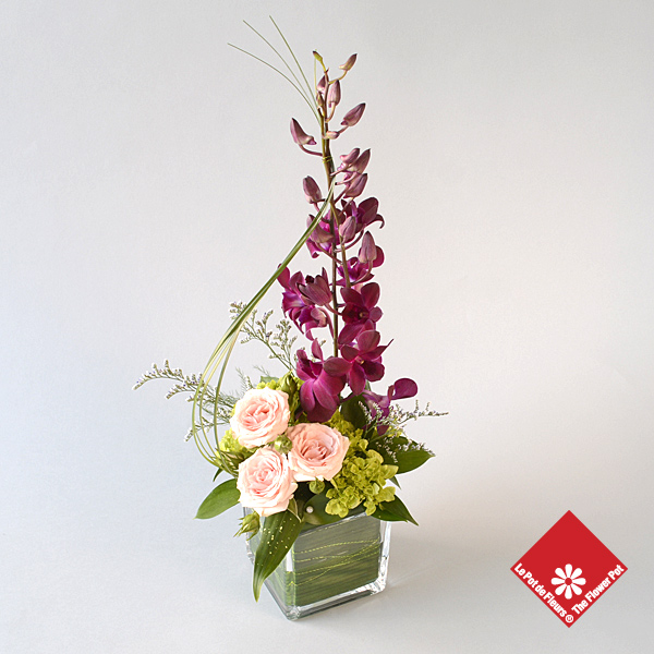 Ravishing Dendrobium Orchids for Administrative Professionals' Week in Montreal.