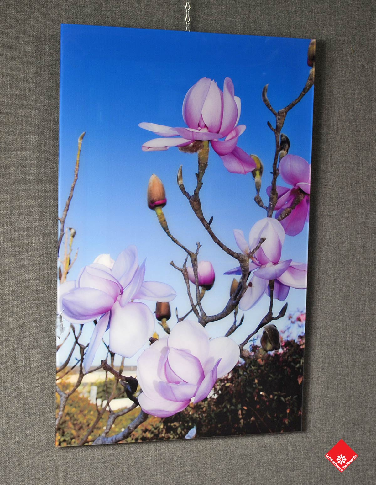 Bring the outside inside with the HD flower picture on acrylic.