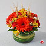 Fall flower arrangement of colorful blooms.