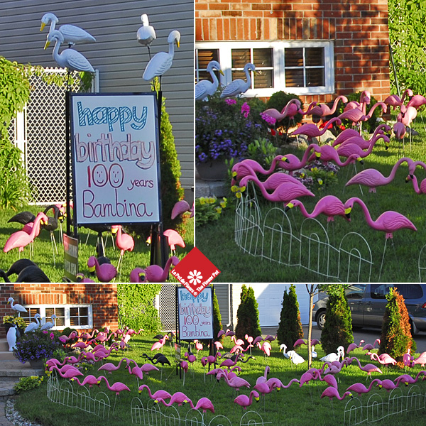 Create your own flamingo garden with lawn decorations in Montreal.
