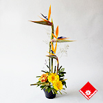 Exotic birds of paradise arrangement.