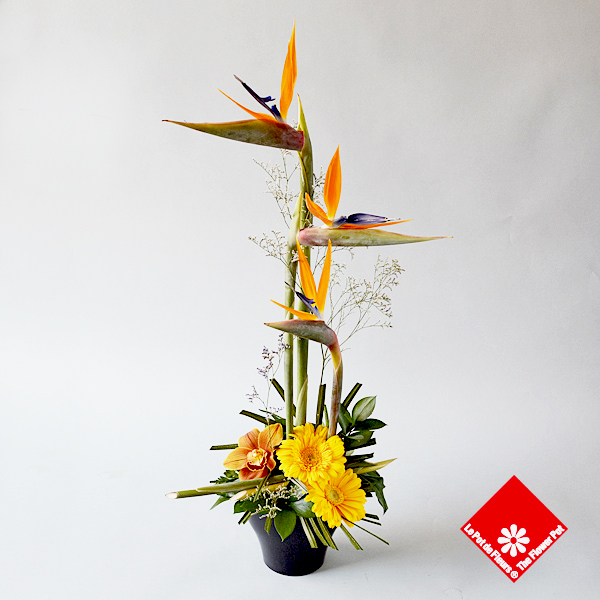 Exotic bird of paradise arrangement.