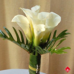 ¢alla lily bouquet from your Montreal florist.