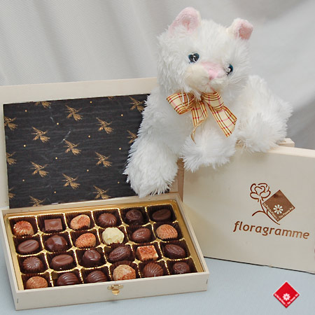 Two dozen Montreal chocolate and stuffed cat.
