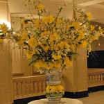 Giant Vase with Daffodils