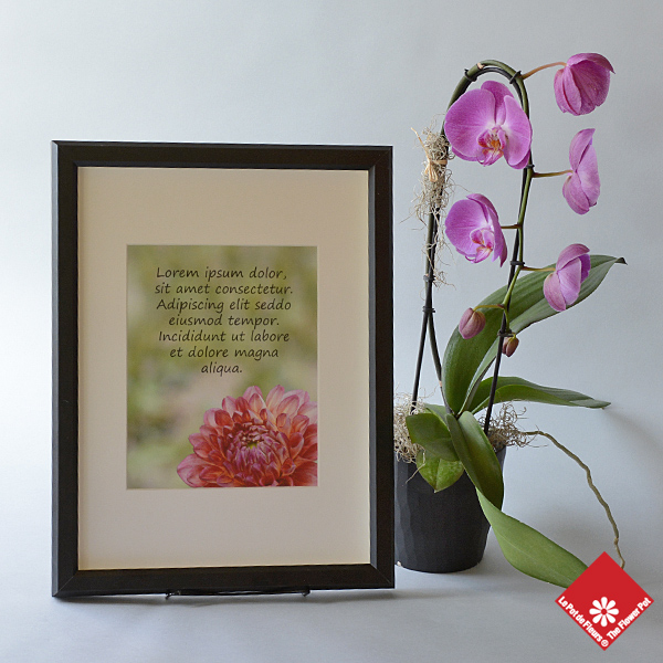 Custom photo frame with an orchidée and your message