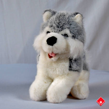 Freddy, the Husky from your Montreal toy store.