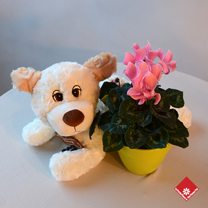 Spunky, the plush dog with personality!