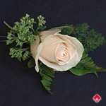 Boutonniere champagne rose