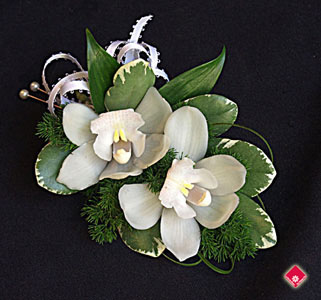 Mini-cymbidium orchid corsage for a Montreal wedding.