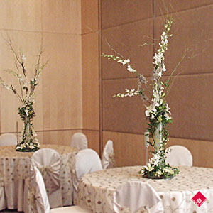 Ochid centerpieces or the wedding reception