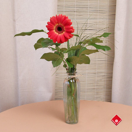 Woman's Day gift of a single flower in a vase.