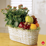 Fresh fruit baskets and kalanchoe plant.