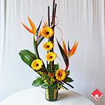 Orange flower arrangement delivered in Montreal.