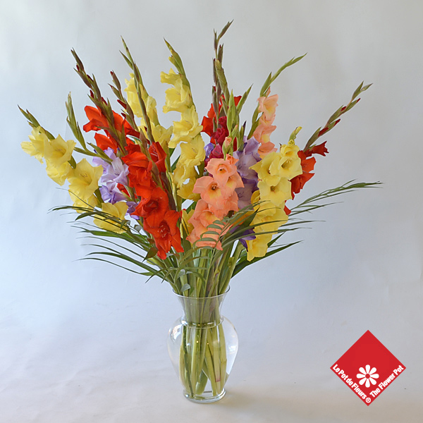 .A vase of gladioli for summer flowers delivery.