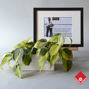 Your photo gift with a decorative potted plant.