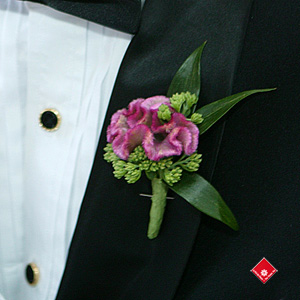 Groom boutonnière made of celosia flowers.