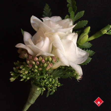 A wedding corsage of white freesias for a Montreal Wedding - The Flower Pot.