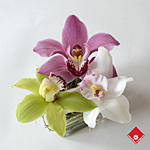 Orchid Garden for Administrative Professionals' Week in Montreal.
