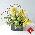 Green cymbidium orchid and lime arrangement.