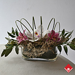 Orchid Arrangement for Administrative Professionals Week in Montreal.