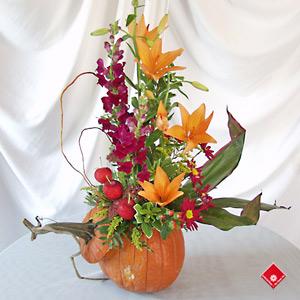http://www.theflowerpot.com/images/product/Pumpkin-2.jpg