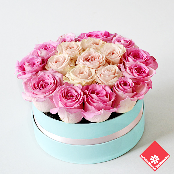 20 Valentine roses in blue gift box