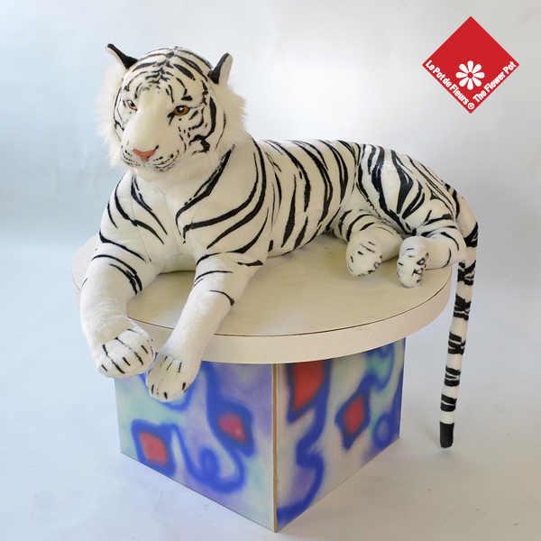 Siba, the white Siberian tiger in a box -The Flower Pot.