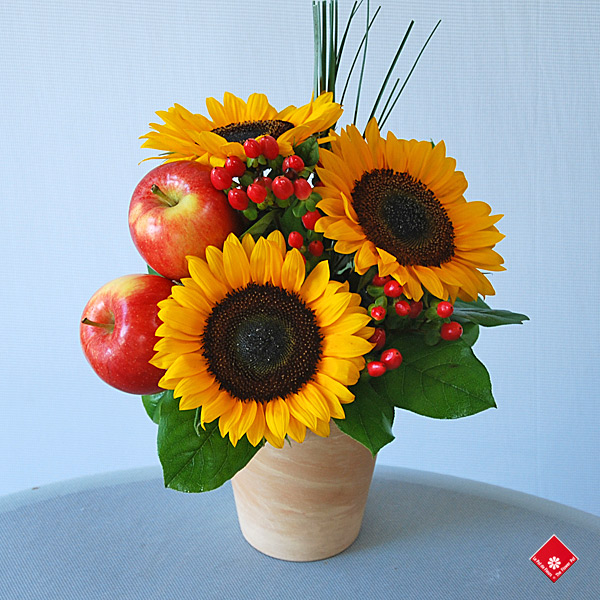 Montreal sunflower arrangements of sunflowers and red apples.