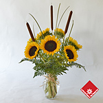 Montreal sunflowers in a vase.
