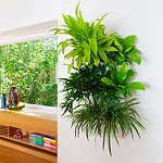 Make your plants seem like they are floating with white wall planters that match the white of your w